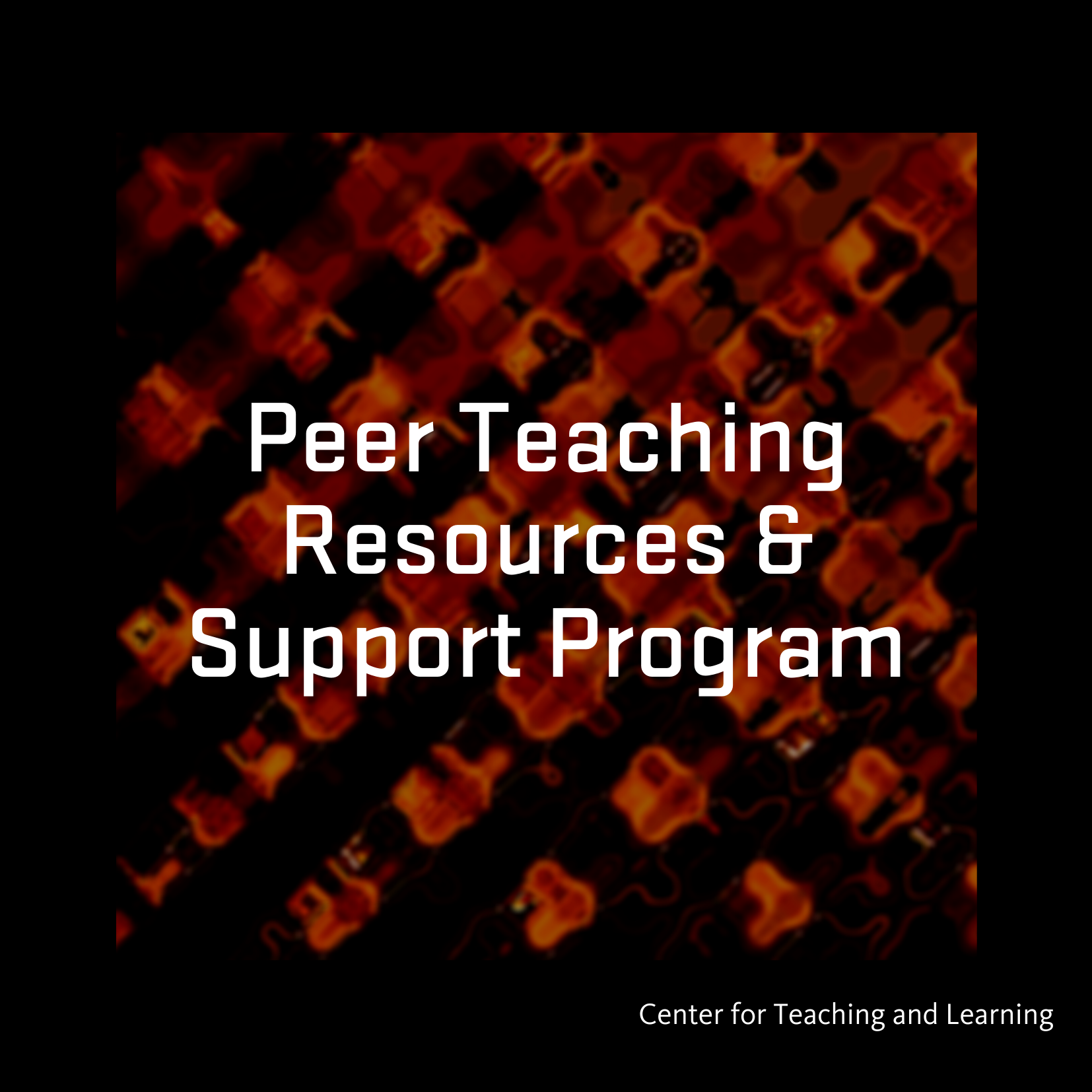 Peer Teaching Resources & Support Program